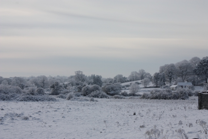 A Snowy Christmas in Breaffy, Castlebar, Co. Mayo